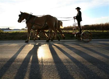 An Amish man rides his cart in a file photo. America's Amish population has nearly doubled and spread out in the past 16 years due to large families, more marriages within the community and longer lifespans, a study showed on Wednesday. REUTERS/Jason Reed