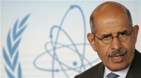 International Atomic Energy Agency (IAEA) Director General Mohamed ElBaradei briefs the media in Vienna's U.N. headquarters in this July 9, 2007 file picture. REUTERS/Herwig Prammer/File