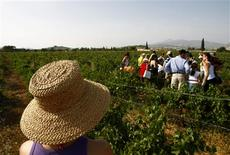 <p>Visitors listen to a guide during a tour at a vineyard in Pallini, a few kilometres from Athens, September 14, 2008. REUTERS/Yiorgos Karahalis</p>