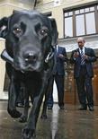 <p>Собака премьер-министра России Владимира Путина Кони с ошейником, на котором установлено устройство GPS, 17 октября 2008 года. Россия предложила Европе объединить усилия в создании спутниковой навигационной системы, которую можно было бы противопоставить американской системе глобального позиционирования GPS. REUTERS/RIA Novosti/Pool (RUSSIA)</p>