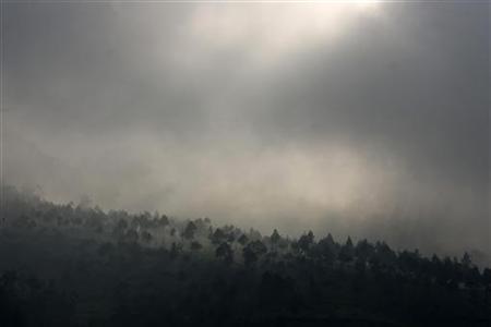 Haze covers trees at a tea plantation near Mount Malabar in Pengalengan, Indonesia's West Java province, April 17, 2008. REUTERS/Beawiharta