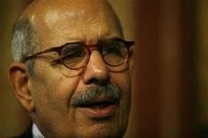 <p>Foto de archivo del director de la Agencia Internacional de Energía Atómica, Mohamed ElBaradei, durante una reunión en Sevilla, España, 5 nov 2008. El pedido de ayuda de Siria para construir una planta de energía nuclear no presenta ningún riesgo de fabricación de bombas y la búsqueda de Occidente de bloquear el proyecto amenaza con desacreditar al organismo de control nuclear de la ONU, dijo el martes el director de la IAEA. REUTERS/Marcelo del Pozo</p>