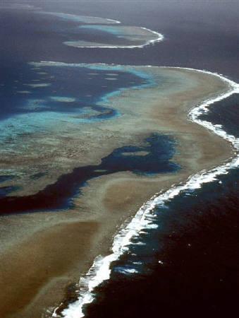 12月4日、オーストラリア政府が労働者に休暇消化を奨励。写真はグレートバリアリーフ。提供写真(2008年 ロイター/HO/Great Barrier Reef National Park Authority)