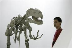 <p>A museum employee walks past the skeletal replica of a dinosaur at the Shanghai Science and Technology Museum in Shanghai, June 22, 2007. REUTERS/Aly Song</p>
