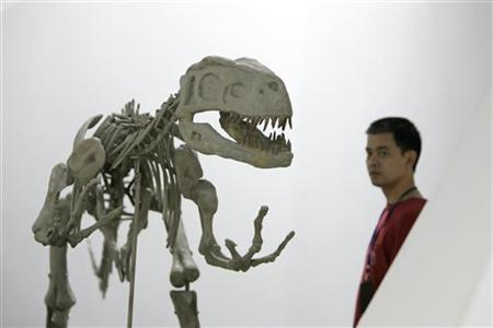 A museum employee walks past the skeletal replica of a dinosaur at the Shanghai Science and Technology Museum in Shanghai, June 22, 2007. REUTERS/Aly Song