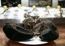 <p>Foto de archivo de una langosta que se cree tiene 140 años de edad en el bar del restaurante City Crab and Seafood en Nueva York, 9 ene 2009. Una langosta que se cree tiene 140 años de edad será regresada al océano luego de haberse convertido por un breve período en la mascota de un restaurante de Nueva York, señaló el viernes un grupo defensor de los derechos animales. REUTERS/Brendan McDermid</p>