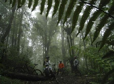 A group of cyclists take a break during their trip at Mount Burangrang rainforest in the outskirts of Bandung, capital of West Java province, April 6, 2008. REUTERS/Beawiharta