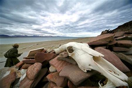 A man walks past a yak skull near Cona Lake in Amdo county in Tibet July 8, 2006. CHINA OUT REUTERS/Stringer