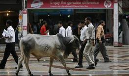 <p>Une organisation nationaliste hindoue a l'intention de commercialiser une nouvelle boisson non alcoolisée à base d'urine de vache, animal considéré comme sacré dans certaines parties de l'Inde comme ici à New Delhi. /Photo d'archives/REUTERS/Desmond Boylan</p>