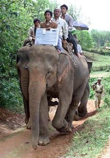 Election officials carry electronic voting machines on elephants ahead of parliamentary elections in the village of Lurigoun, 50 km east of Guwahati in this April 19, 2004 file photo. REUTERS/Utpal Baruah