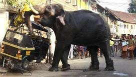 <p>An elephant damages a vehicle after going on a rampage in the southern Indian city of Kochi February 27, 2009. REUTERS/Sivaram</p>