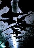 <p>A tourist looks up through a glass tunnel at a group of Port Jackson sharks resting in the Sydney Aquarium August 5, 2003. REUTERS/David Gray</p>