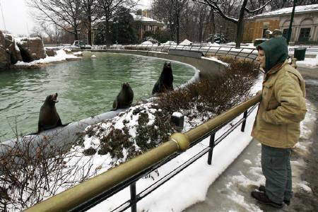 4月29日、ニューヨークのブロンクス動物園(写真)は1500万ドルの予算不足によって4つの展示を閉鎖することに。1月撮影(2009年 ロイター/Mike Segar)