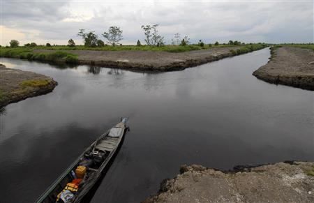 A view of drainage canals, which are supposed to be developed for farming, in a peat area in Mangtangai in Indonesia's central Kalimantan April 26, 2009. REUTERS/Ferry Latif