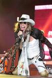 <p>O vocalista do Aerosmith, Steven Tyler, foi hospitalizado após machucar cabeça, pescoço e ombro ao cair de um palco na Dakota do Sul, disse na quinta-feira um porta-voz do local do show. (PRNewsFoto/Rock 'n' Roll Fantasy Camp)</p>
