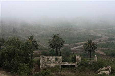 The remains of an old colonial house is seen during a foggy morning in the hills above Dellys August 16, 2009. REUTERS/Zohra Bensemra