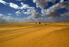 <p>Una immagine del deserto del Sahara nel nord del Mali. REUTERS/Yves Herman PP03080090 HRM/MA</p>