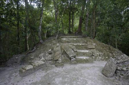 A partially uncovered Maya temple is seen at the El Mirador archaeological site in the Peten jungle, Guatemala August 25, 2009. One of Guatemala's greatest ancient Mayan cities may have died out in a bloody battle atop a huge pyramid between a royal family and invaders from hundreds of miles away, archaeologists say. REUTERS/Daniel LeClair