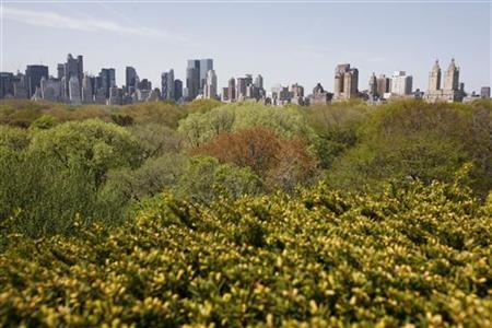The Manhattan skyline is seen beyond Central Park from the Iris and B. Gerald Cantor Roof Garden at The Metropolitan Museum of Art in New York April 30, 2007. REUTERS/Shannon Stapleton