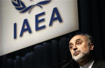 Head of Iran's Atomic Energy Organisation Ali Akbar Salehi makes a speech at the 53rd International Atomic Energy Agency IAEA General Conference in Vienna September 14, 2009. REUTERS/Herwig Prammer