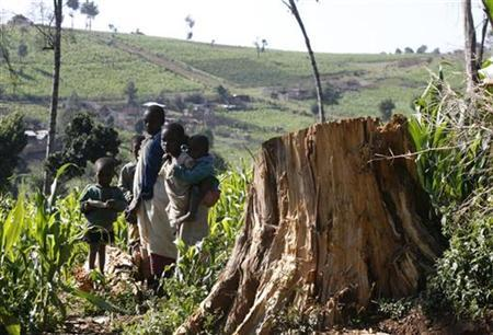 Ogiek tribes children stand near tree stamp in Mauche settlement scheme of Mau Forest Complex in the Rift Valley, about 200 km (127 miles) to the south-west of Kenya's capital Nairobi, July 29, 2009. REUTERS/Thomas Mukoya