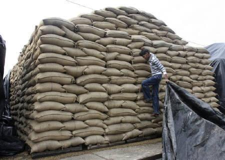 A labourer pulls a plastic sheet to cover sacks of paddy from rain at a grain market in Chandigarh January 13, 2010. The return of inflation to the headlines comes at the wrong time for the ruling Congress party as it mulls reforms which could entail painful adjustments to freer markets by millions of Indians. REUTERS/Ajay Verma