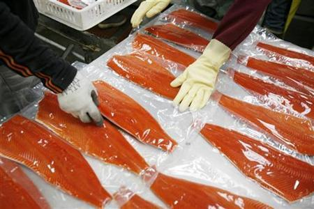 Workers stack Sockeye salmon filets after being vacuum packed to be frozen at the Alitak Cannery in Alitak, Alaska August, 1 2008. REUTERS/Lucas Jackson