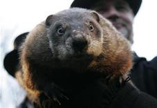 <p>Weather prognosticating groundhog Punxsutawney Phil makes his annual prediction on Gobbler's Knob in Punxsutawney, Pennsylvania, on the 123rd Groundhog Day, February 2, 2009. REUTERS/Jason Cohn</p>