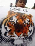 <p>A schoolboy holds a placard with a picture of a tiger during a demonstration to bring attention to the plight of the endangered animal in New Delhi July 28, 2009. REUTERS/Buddhika Weerasinghe</p>