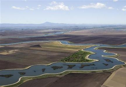 An aerial view of the Sacramento-San Joaquin Delta in California in a file photo. California has been deluged with rain and snow this winter, but its epic tug-of-war over water rages on, this time in the form of a plan by Senator Dianne Feinstein to divert more water to the state's farmers. REUTERS/Robert Durrell/Pool