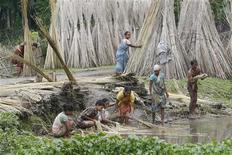 <p>Persone lavorano la iuta in India. Foto d'archivio. REUTERS/Rupak De Chowdhuri</p>