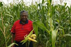 <p>A South African commercial farmer inspects the maize growing on his farm in Mpumalanga province in this February 23, 2006 file photo. REUTERS/Siphiwe Sibeko</p>