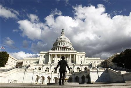 A tourist gazes up towards the dome of the U.S. Capitol, January 25, 2010. REUTERS/Kevin Lamarque