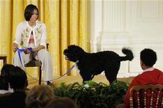 <p>Bo, il cane degli Obama, insieme a Michelle alla Casa Bianca. REUTERS/Jonathan Ernst (UNITED STATES - Tags: POLITICS ANIMALS)</p>