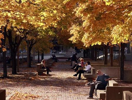 People sit under a canopy of fall leaves during a warm afternoon in Boston, Massachusetts November 9, 2009. REUTERS/Brian Snyder