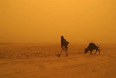 A man walks with his cow along a road during a dust storm in Ghazni province, southwest of Kabul, in this April 7, 2005 file photo. REUTERS/Stringer