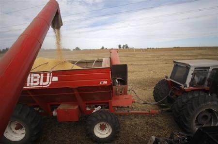 Farmers harvest soybeans in Argentina's town of Estacion Islas  April 3, 2010. REUTERS/Enrique Marcarian/Files