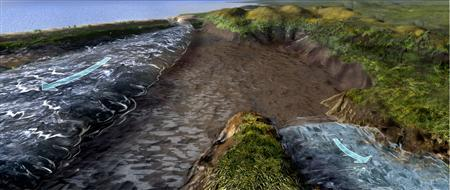 An illustration showing how a strong wind could push back waters from two ancient basins--a lagoon (left) and a river (right)--to create a temporary land bridge. REUTERS/Illustration by Nicolle Rager Fuller/University Corporation for Atmospheric Research