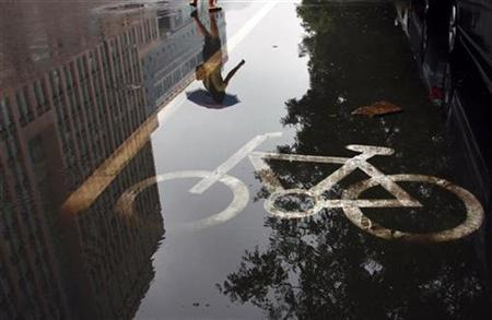 A woman carrying an umbrella walks past a puddle in a bicycle lane on a rainy day in Beijing September 17, 2010. REUTERS/David Gray