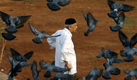 An elderly man walks in a park in Mumbai January 18, 2009. REUTERS/Arko Datta/Files