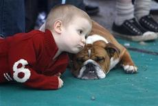 <p>Мальчик играет с бульдогом во время дог-шоу в Калоче 18 апреля 2010 года. Собака может принести маленьким детям много радости и приятных воспоминаний, а в некоторых случаях - и избавление от аллергии. REUTERS/Laszlo Balogh</p>