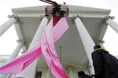 Workers install a pink ribbon in to promote awareness of breast cancer on the front of the White House in Washington, October 26, 2009. REUTERS/Jonathan Ernst