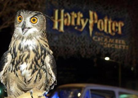 A European eagle owl Tacoma, which is featured in the new film ''Harry Potter and the Chamber of Secrets'' poses at the film's Los Angeles premiere in Los Angeles, November 14, 2002. REUTERS/Fred Prouser