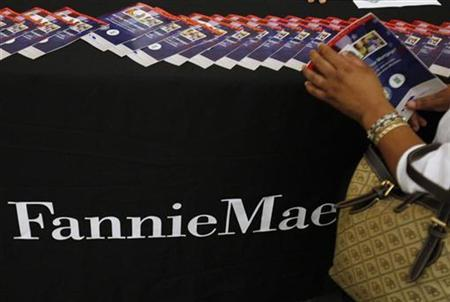 A woman takes a brochure detailing how homeowners can make their mortgage payments more affordable at the Fannie Mae booth set up at the Housing Rescue Fair, part of the National Urban League's Economic Empowerment Tour, in Dallas, Texas June 13, 2009. REUTERS/Jessica Rinaldi