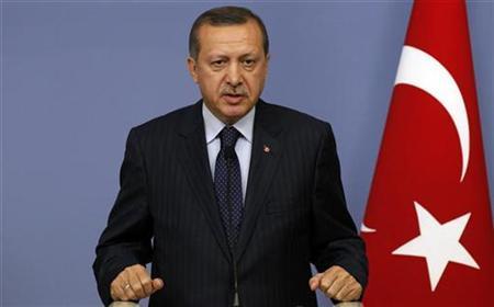 Turkey's Prime Minister Recep Tayyip Erdogan speaks during a news conference with Croatia's Prime Minister Jadranka Kosor in Ankara November 26, 2010. REUTERS/Umit Bektas
