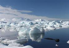 <p>Кит проплывает мимо айсберга в водах Антарктики, 23 января 2009 года. Южнокорейское рыболовецкое судно затонуло в водах Антарктики, как минимум пять членов экипажа погибли, 17 пропали без вести, сообщили власти Новой Зеландии и Южной Кореи. REUTERS/Alister Doyle</p>