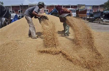 Labourers remove dust from wheat at a grain market in the northern Indian city of Chandigarh June 22, 2010. REUTERS/Ajay Verma/Files