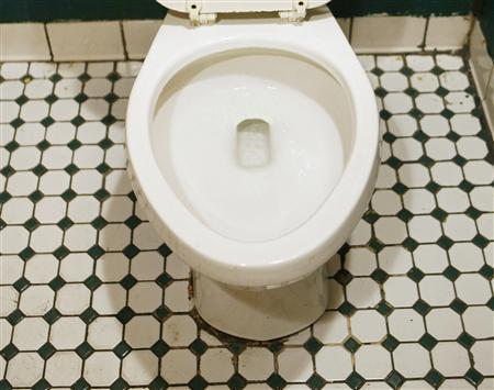 A toilet is seen in New York April 29, 2008. REUTERS/Lucas Jackson