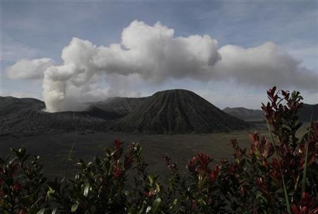 The Mount Bromo volcano spews smoke as seen from Ngadisari village in Indonesia's East Java province November 24, 2010. REUTERS/Sigit Pamungkas (INDONESIA - Tags: ENVIRONMENT)