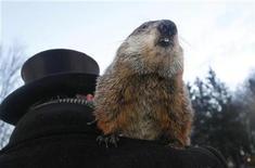 <p>Punxsutawney Phil sobre los hombros de su encargado oficial, John Griffith, en Punxsutawney, EEUU, feb 2 2011. Mientras una gran tormenta invernal paraliza gran parte de Estados Unidos con nieve, hielo y lluvia, la marmota más famosa del país predijo el miércoles que la primavera no está muy lejos. REUTERS/ Jason Cohn</p>